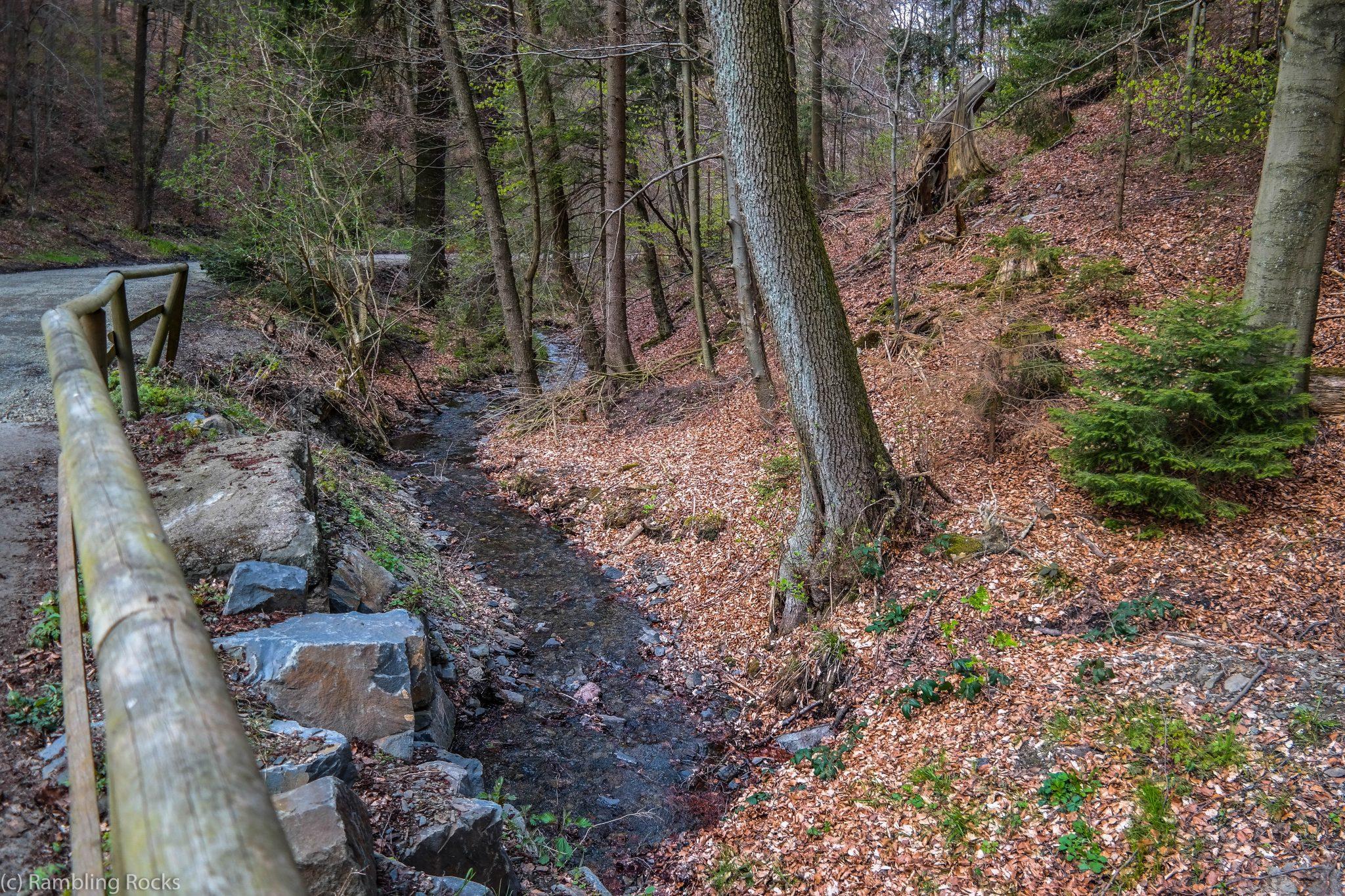 Wolfshagen im Harz
